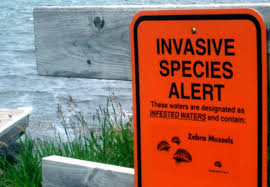 DNR Announces Celebrity Fundraiser to Combat Invasives